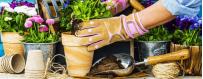 Pojemniki uprawy roślin, doniczki do warzyw